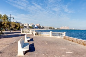 APARTMENT WITH SEA VIEW.TORREVIEJA